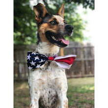 American Flag Dog Bow Tie | Fourth of July Bow Tie | 4th of July| slip on bow tie