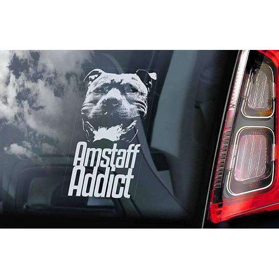 Amstaff Addict - Car Window Sticker - American Staffordshire Terrier Staffie Staffy Dog Sign Decal - V01