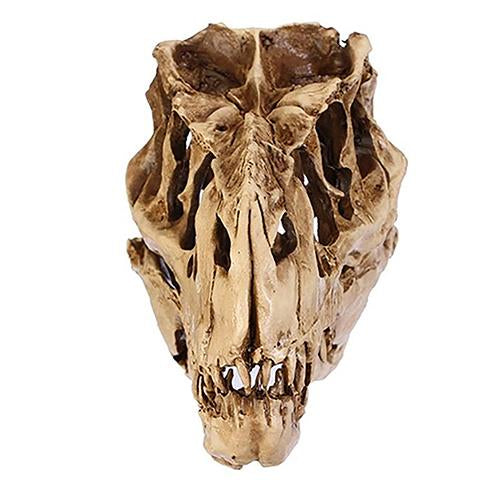 Resin Crafts Dinosaur Tooth Skull Fossil Teaching Skeleton Model Halloween Home Office Halloween Decoration