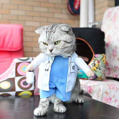 Funny Cat Clothes Sex Nurse Suit Clothing Costume For Cats Cool Christmas Halloween Costume Pet Clothes Suit For Cat XS-2XL 27S1