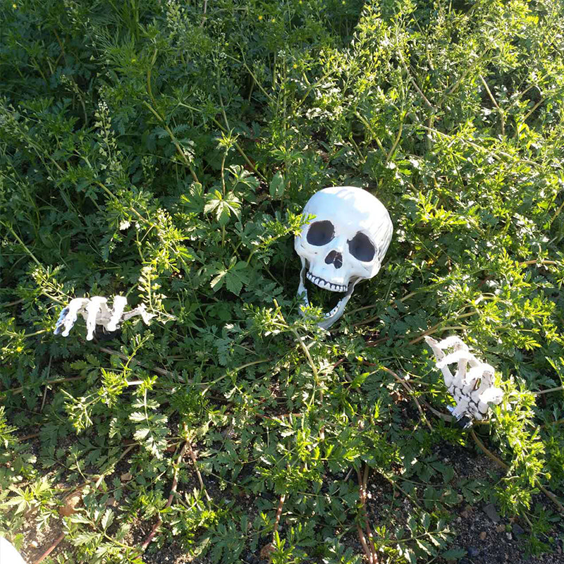 Halloween Skeleton Decorations.Halloween Skeleton Lawn Stakes Set Plastic Hands And Skull Haunted House Escape Horror Props Halloween Decorations