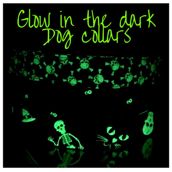 Halloween dog collar, Dog collar, Glow in the dark collar, Glow in the dark dog collar, Halloween glow in the dark collar, skulls dog collar