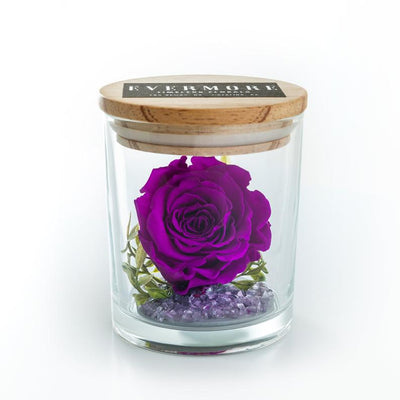 The Evermore Preserved Purple Rose Keepsake Gift - gift for girlfriend - gift for wife - gift for women - anniversary gift Mother's Day Gift