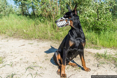 Funny Smiling muzzle for dog, Doberman, Pit Bull, German Shepard, Bull Terrier, Pinscher, Husky funny dog accessory - Smiling dog