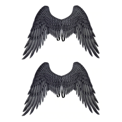2 Pack- 3D Devil Wings