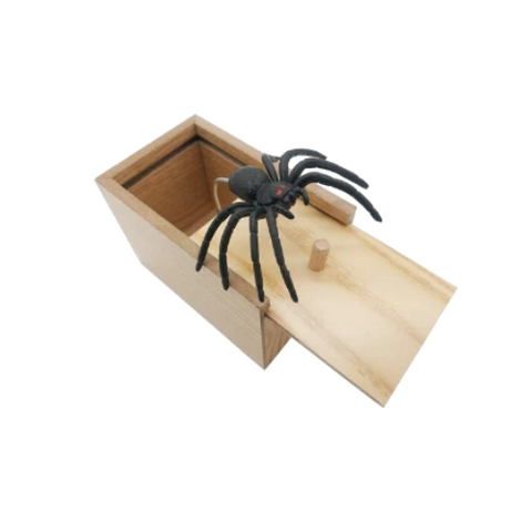 (1 Pack) Spider In A Box