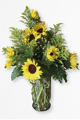 GLW014 - SUNFLOWERS