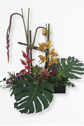 GLW025 - EXOTIC BOX (MONSTERA LEAVES, SYMBIDIUM, ROSTRATA)