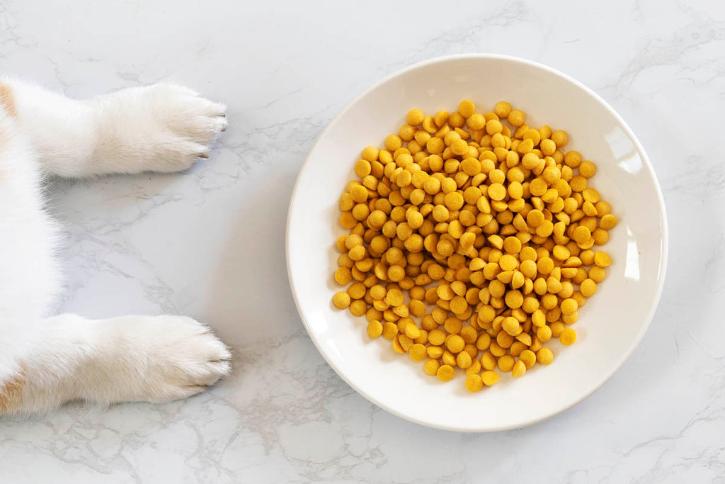 simple diy tuna dog treats by LaCorgi