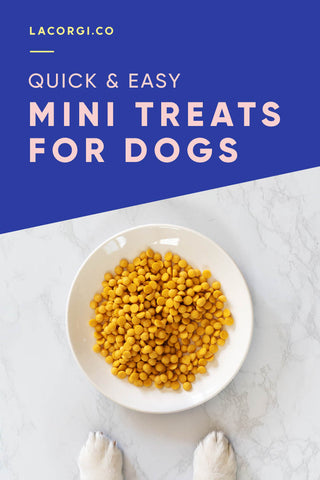 Quick easy mini treats recipe for dogs by LaCorgi