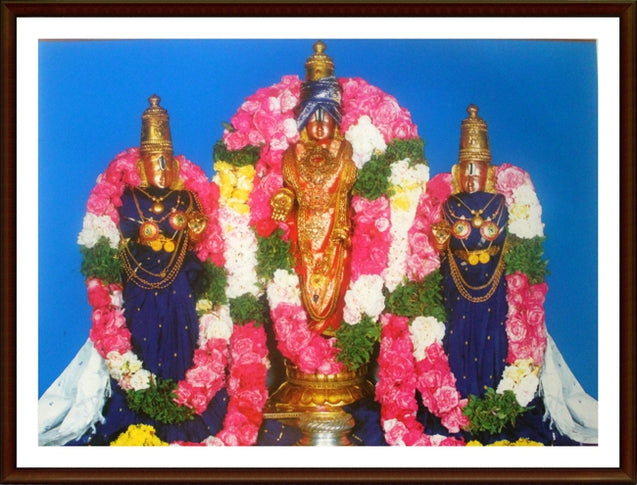 Lord Balaji with Sridevi and Bhudevi - Frame
