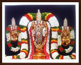 Lord Venkatachalapaty with Sridevi and Bhudevi - Frame
