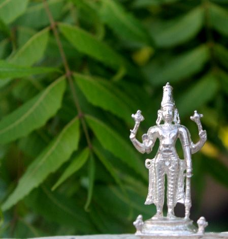 Varadaraja Perumal (Made Of Pure Silver)