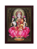 Goddess Lakshmi with beautiful arch and brown background Photo frame