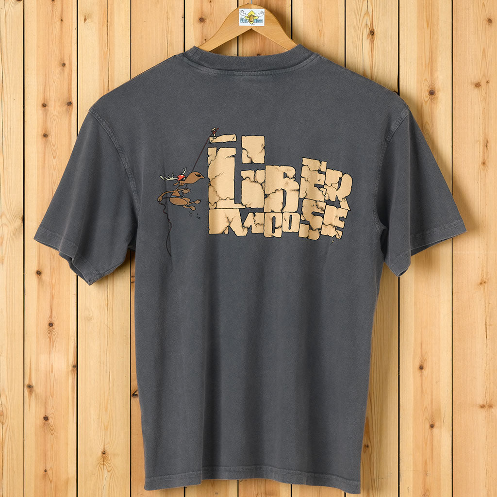 Abseil T-Shirt - Large Back Print - Charcoal
