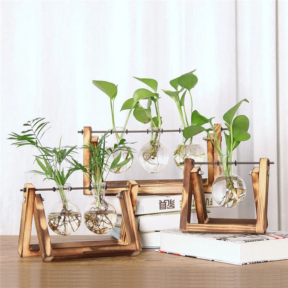 Olivra Homedecor Collections Propagation Stations