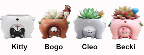 Funny Cartoon Succulent and Cactus Planters