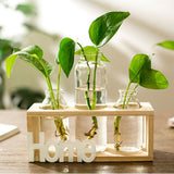Home Wooden Houseplant Propagation Station