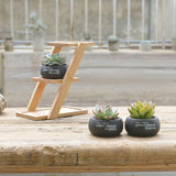 Round Concrete Planters with Stand