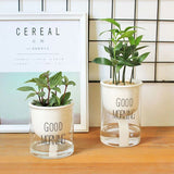 Ceramic Automatic Watering Houseplant Planters