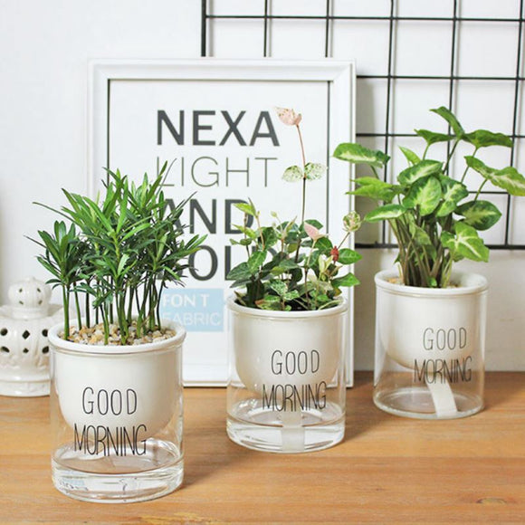 Ceramic Automatic Auto Watering Planters