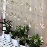 String Hanging Propagation Vases