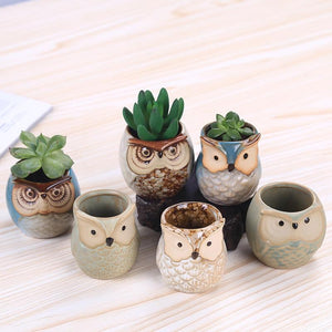 Animal Owl Succulent Planters Plant Pot