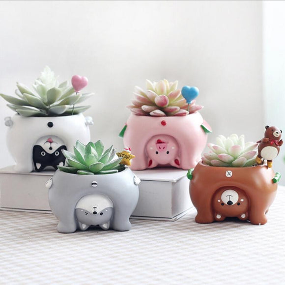 Funny Cartoon Animal Succulent Planters Plant Pots