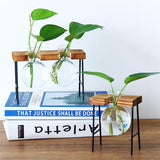 Houseplant Rooting Stand Station
