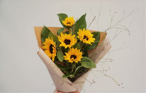 (JB7) Simply Sunflowers
