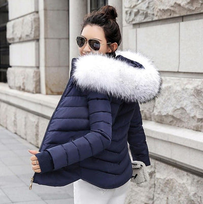 Fur Collared Jacket