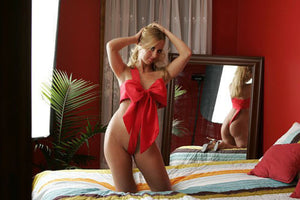 The Naughty Body Bow Sexy Lingerie - great GIFT