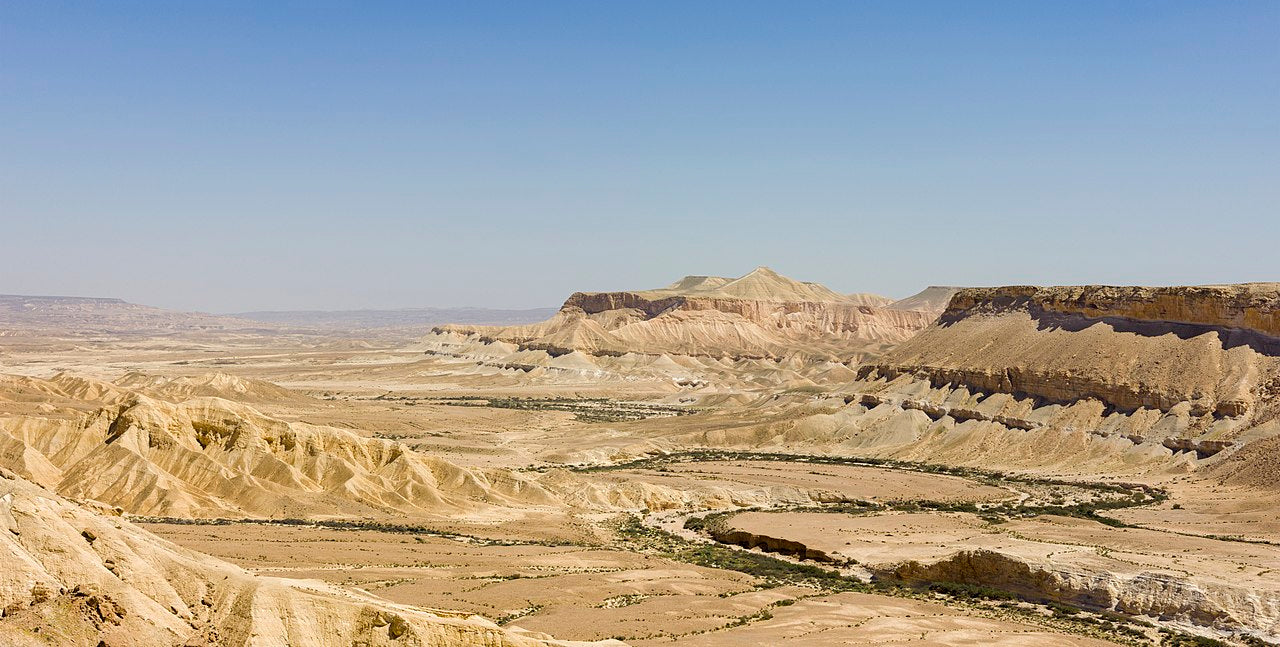 Day five: finding my angels in the Negev Desert