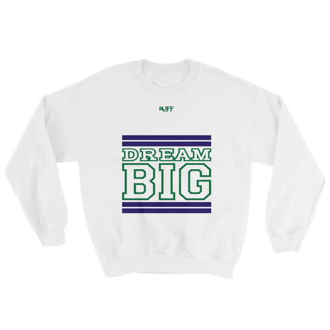 White Navy Blue and Green Sweatshirt