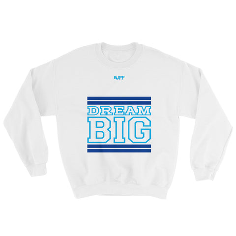 White Royal Blue and Carolina Blue Sweatshirt