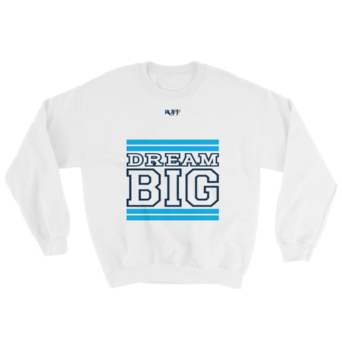 White Carolina Blue and Navy Blue Sweatshirt