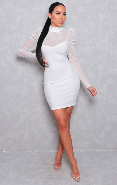 White Fishnet Long Sleeve High Neck Bodycon Mini Dress - Raven