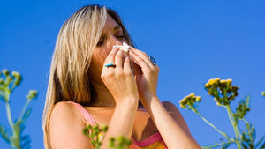 10 Tips to Help You Survive Allergy Season