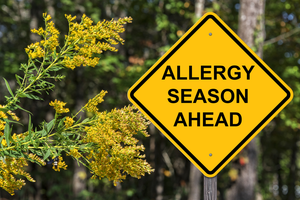 Climate Change Worsens Allergies
