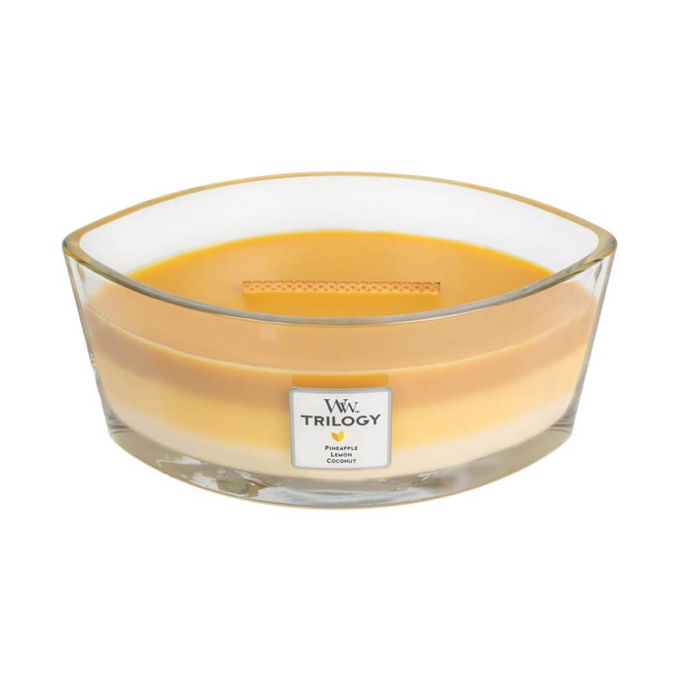 Ellipse Trilogy WoodWick Soy Candle - Fruits of Summer