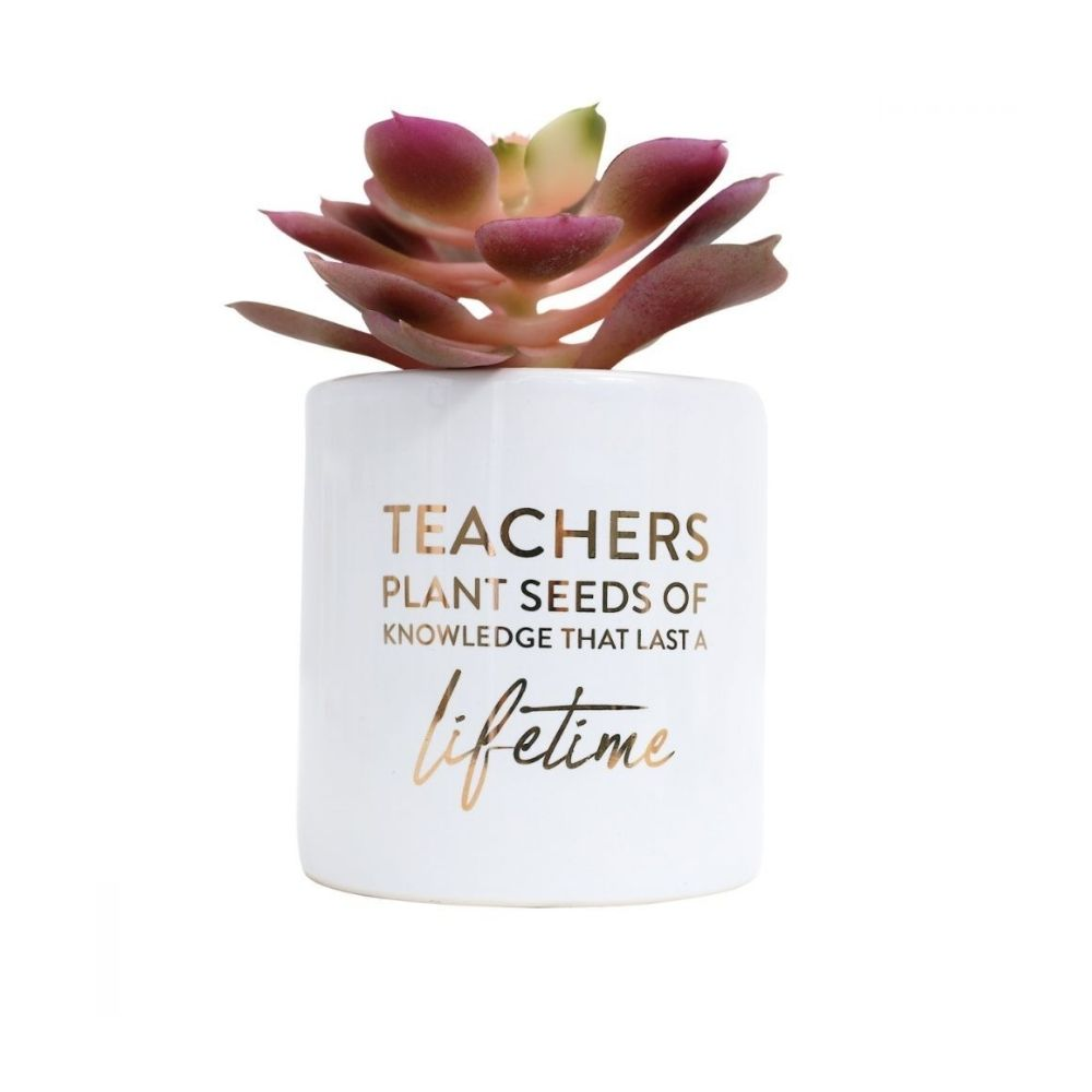 Teachers Gift Lifetime from Funky Gifts NZ
