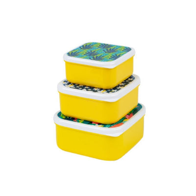 Tropic Fun 3pc Container Set from Funky Gifts NZ