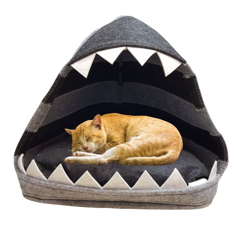Felt Cave Pet Bed - Shark