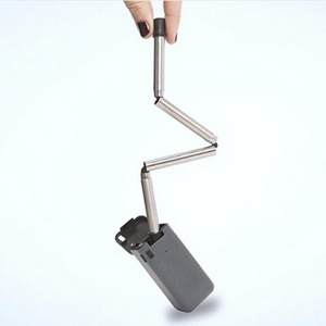 Stainless Steel Portable Straw