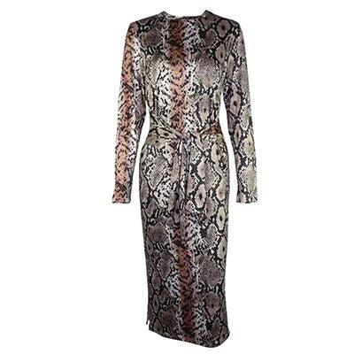 Fashion Snake Print Dress