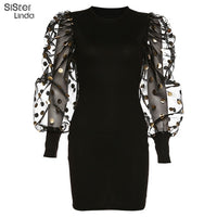 Mesh Lantern Sleeve Dress