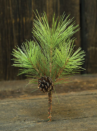 Tahoe Needle Pine PickOld Time ShoppeGreen