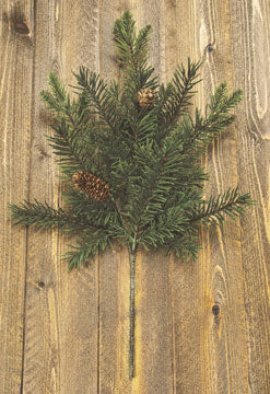 Douglas Fir SprayOld Time ShoppeWinter