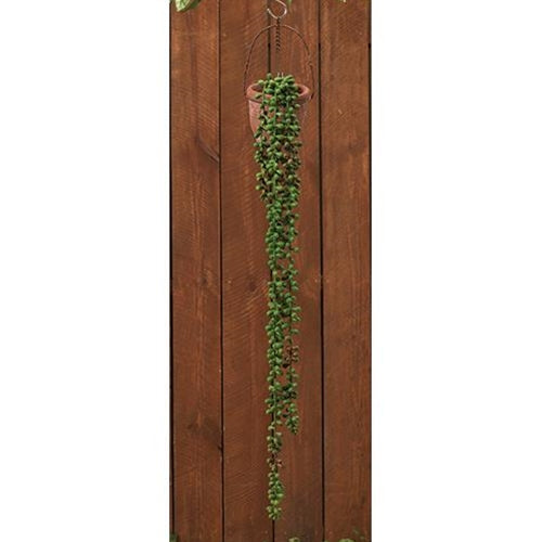 "Succulent Strand, 28"" LOld Time ShoppeHanging"
