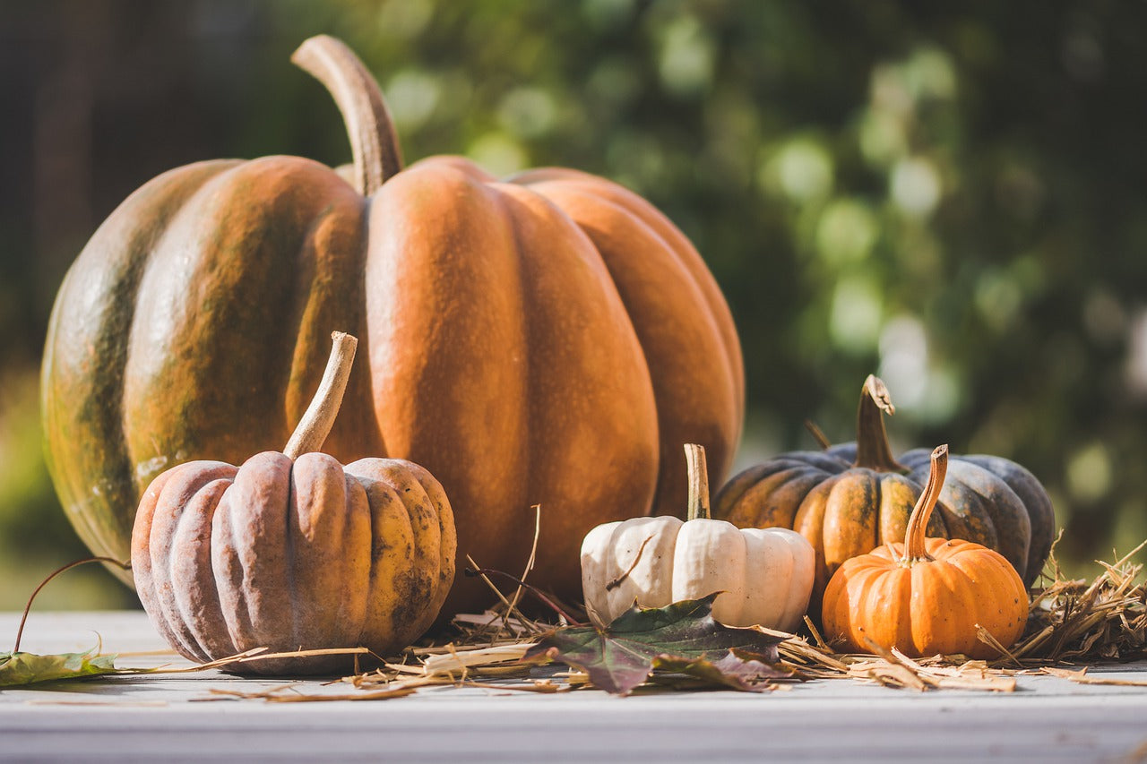 Things you might not know about Halloween